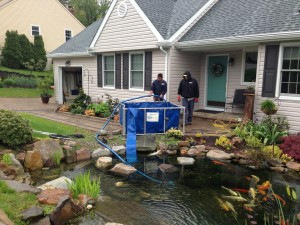 Pond Cleaning in Philadelphia