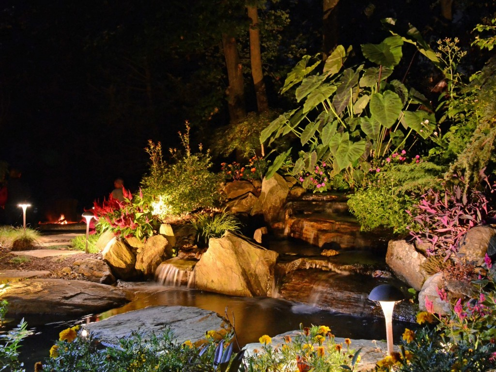 Are Underwater Pond Lights Harmful To Fish Turpin