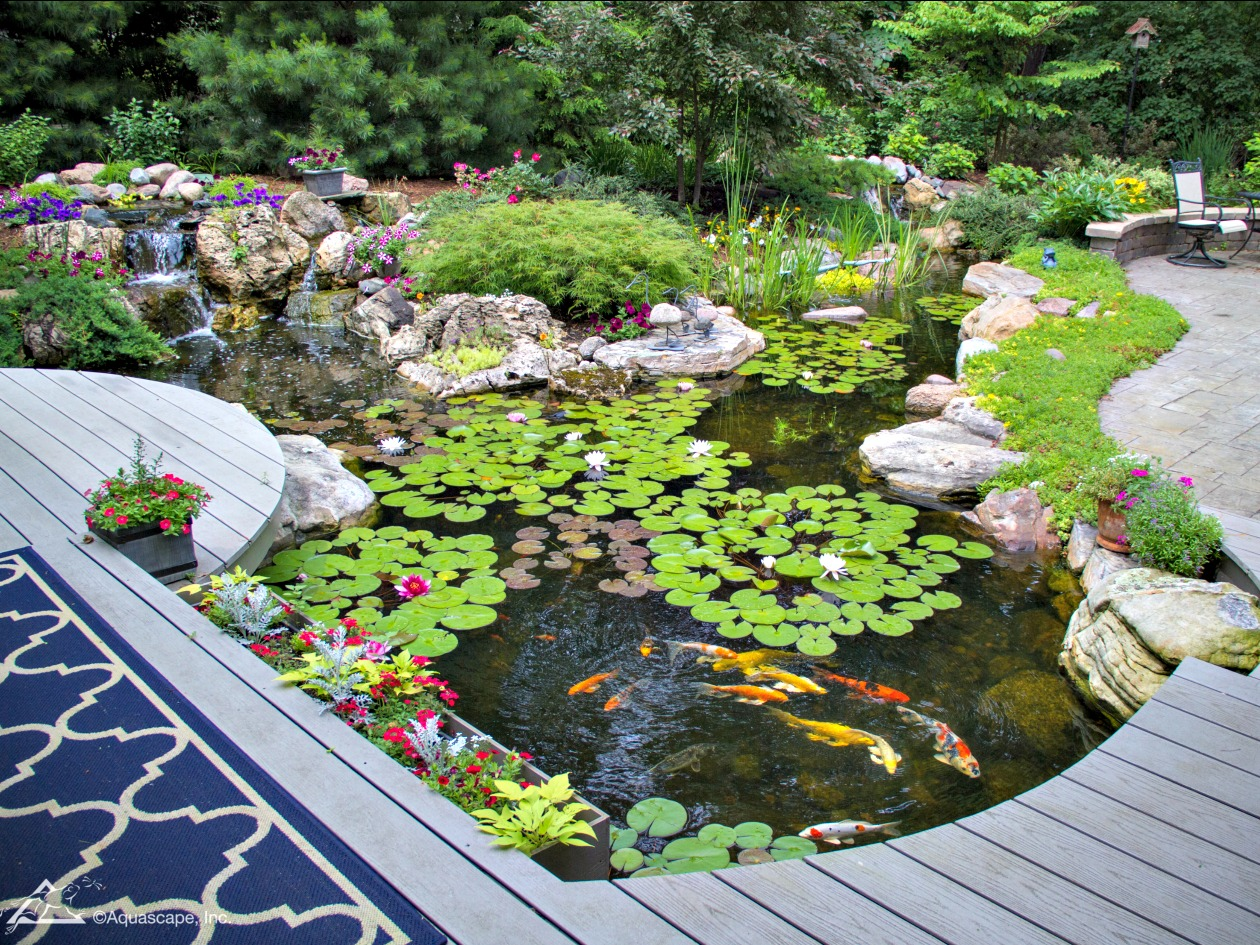 How much does a pond cost to have installed 4