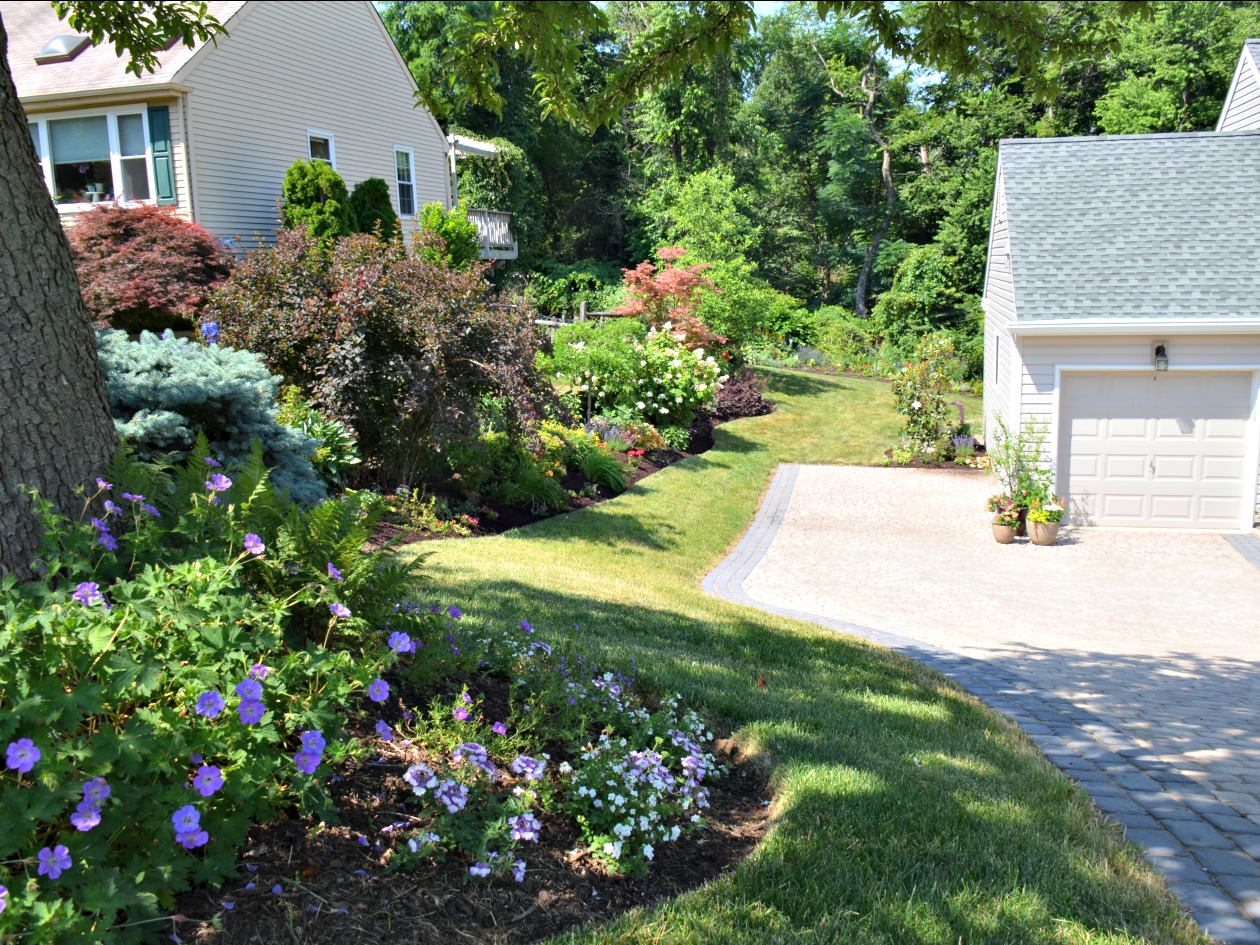 How to plant a low maintenance landscape garden in eastern for Choosing plants for landscaping