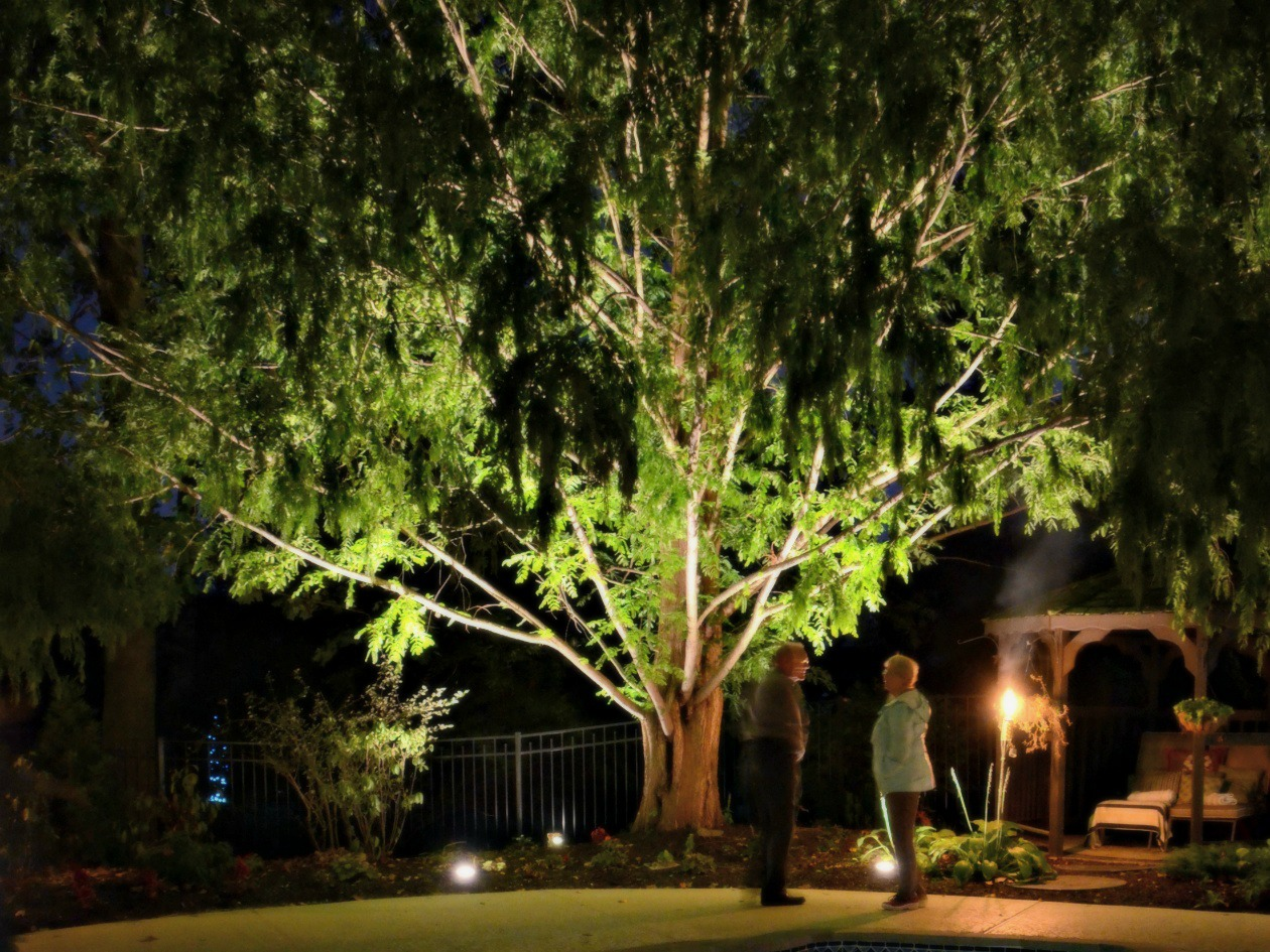 Outdoor Lighting Chadds Ford
